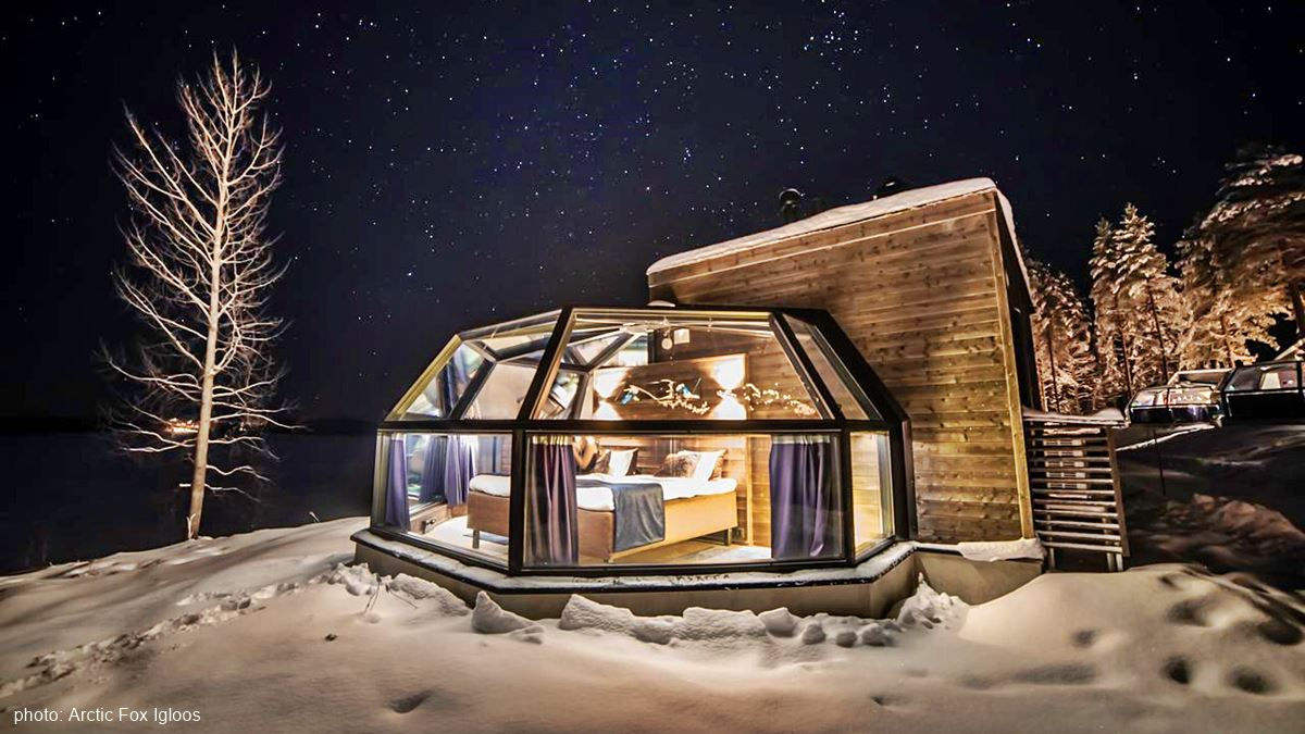 Arctic Fox glass igloos